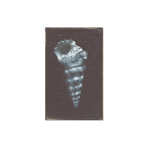 Restoring Force Journal