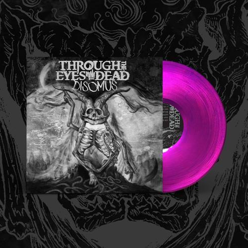 Disomus Transparent Purple