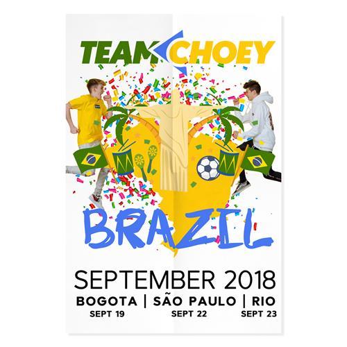 Signed Brazil Poster
