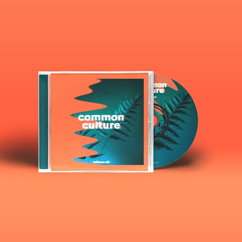 Common Culture Volume VII