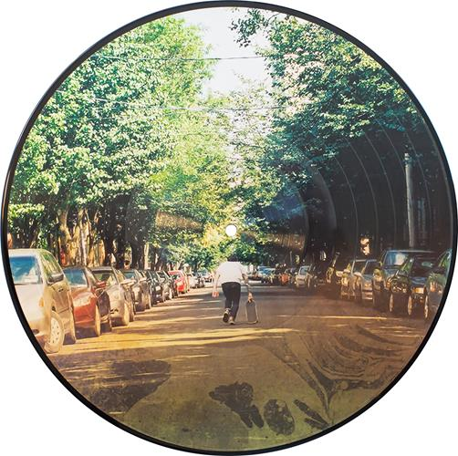 The Finer Things Picture Disc