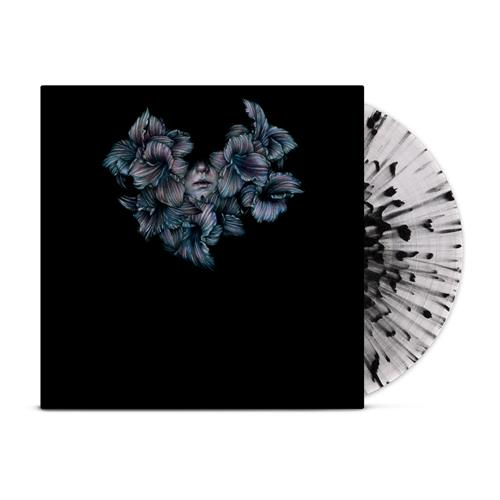DIVISI Clear w/ Black Splatter