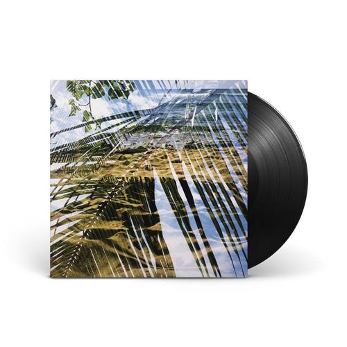 Black Vinyl