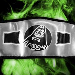 YOUTH SIZE Logo Silver Belt