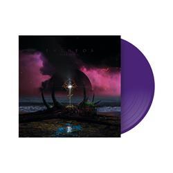 Dark Future Custom Purple