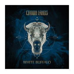 White Buffalo  12 X 12 Poster