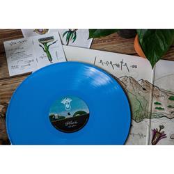 Vinyl Lps Equal Vision Records