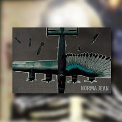 Jet 24x36