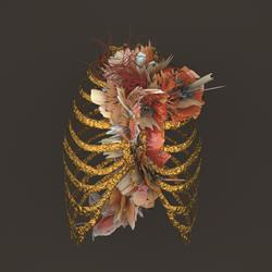 Lung  18X18 Litho Print