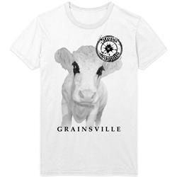 Grainsville White