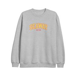 Big Vibe Grey Heather Crewneck