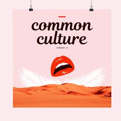 Common Culture VI 18X18