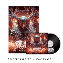 Embodiment 01