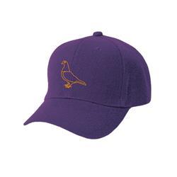Pigeon Purple Snapback