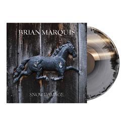 Snow Damage Black/Silver 160 Gram Vinyl