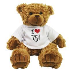 I <3 FLW Teddy Bear