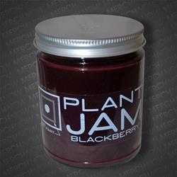 DOUGHNUT PLANT JAM: Blackberry