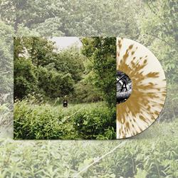 Exalt - Pale Light Clear w/ Gold Splatter LP