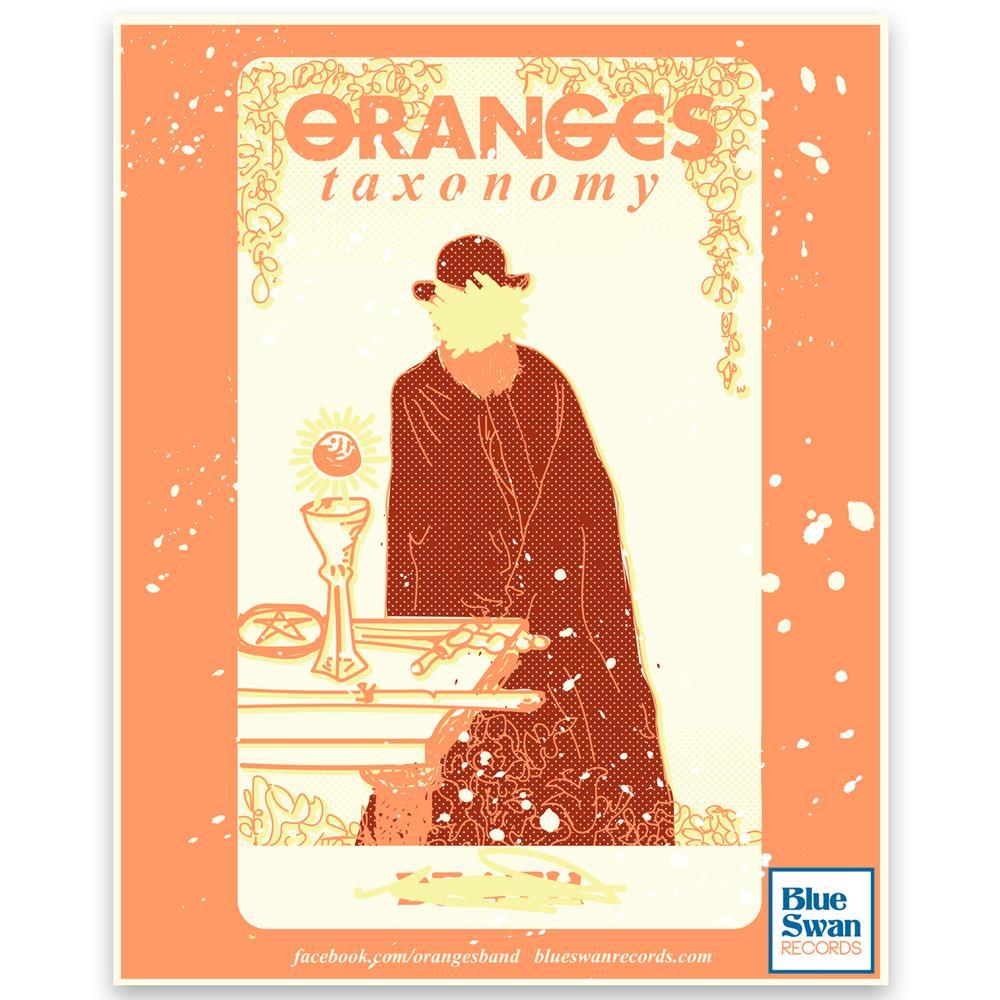 Oranges - Taxonomy  11