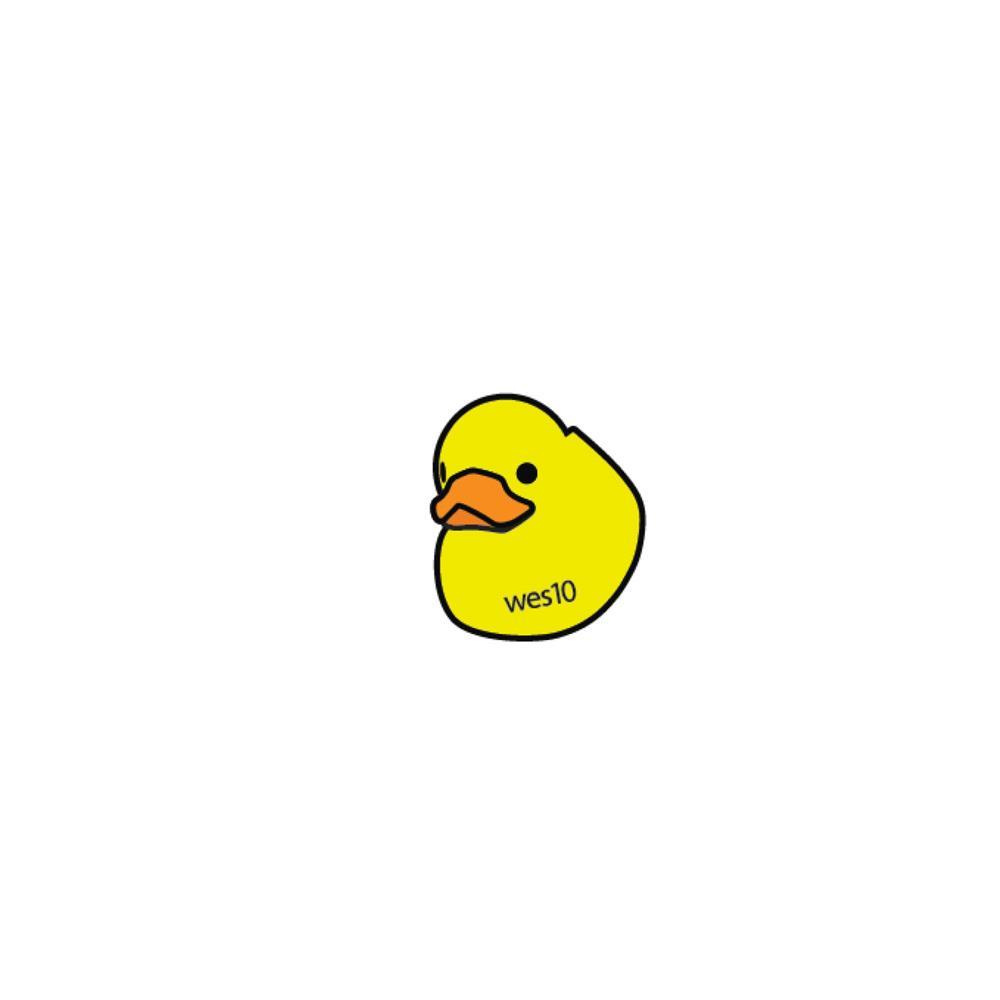 Duck Wes10  Enamel