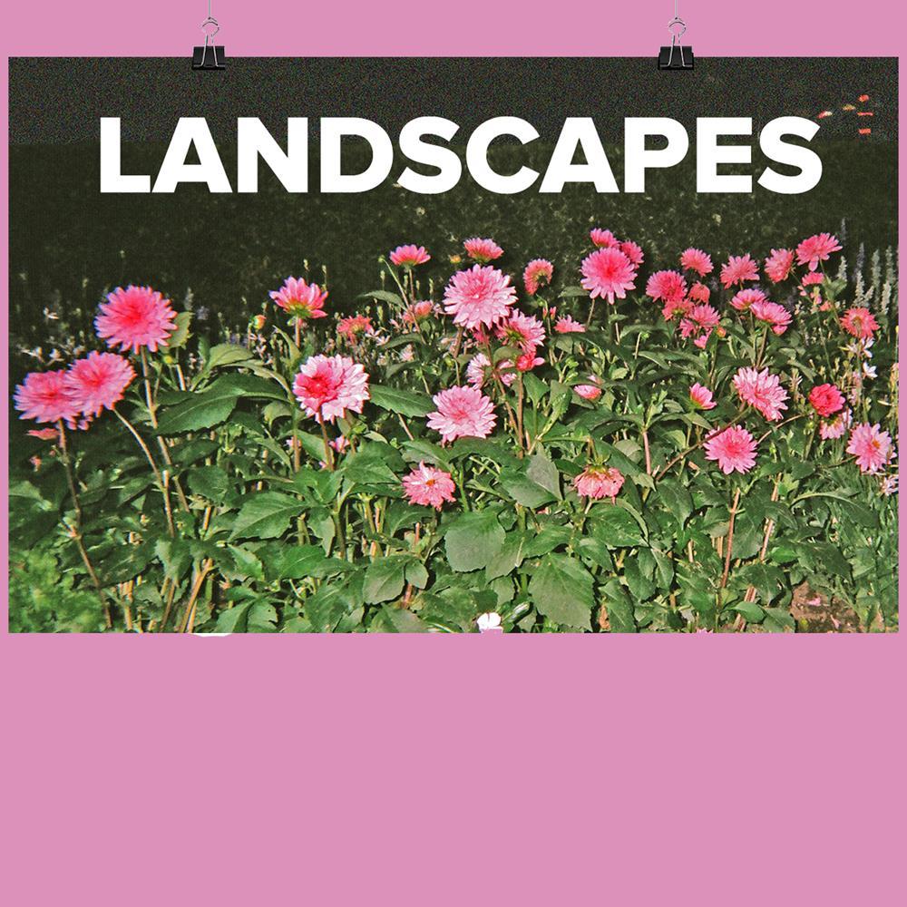 SIGNED Landscapes Vol. II  11X17