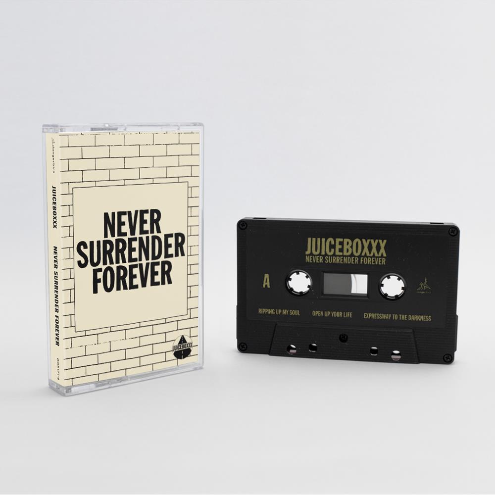Never Surrender Forever