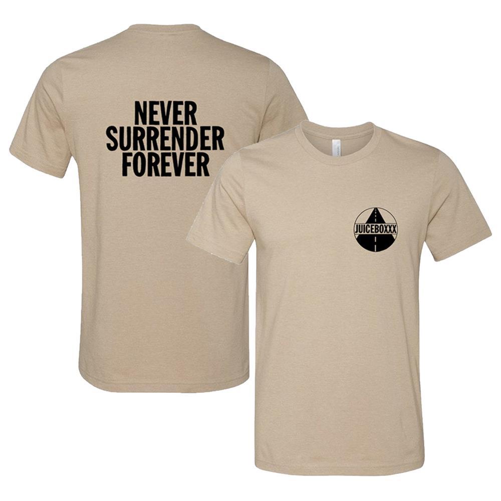 Never Surrender Forever Heather Tan