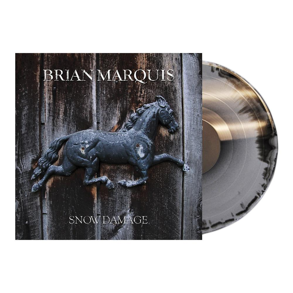Snow Damage Black/Silver 160 Gram Vinyl
