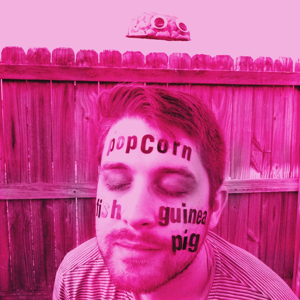 Popcorn Fish Guinea Pig