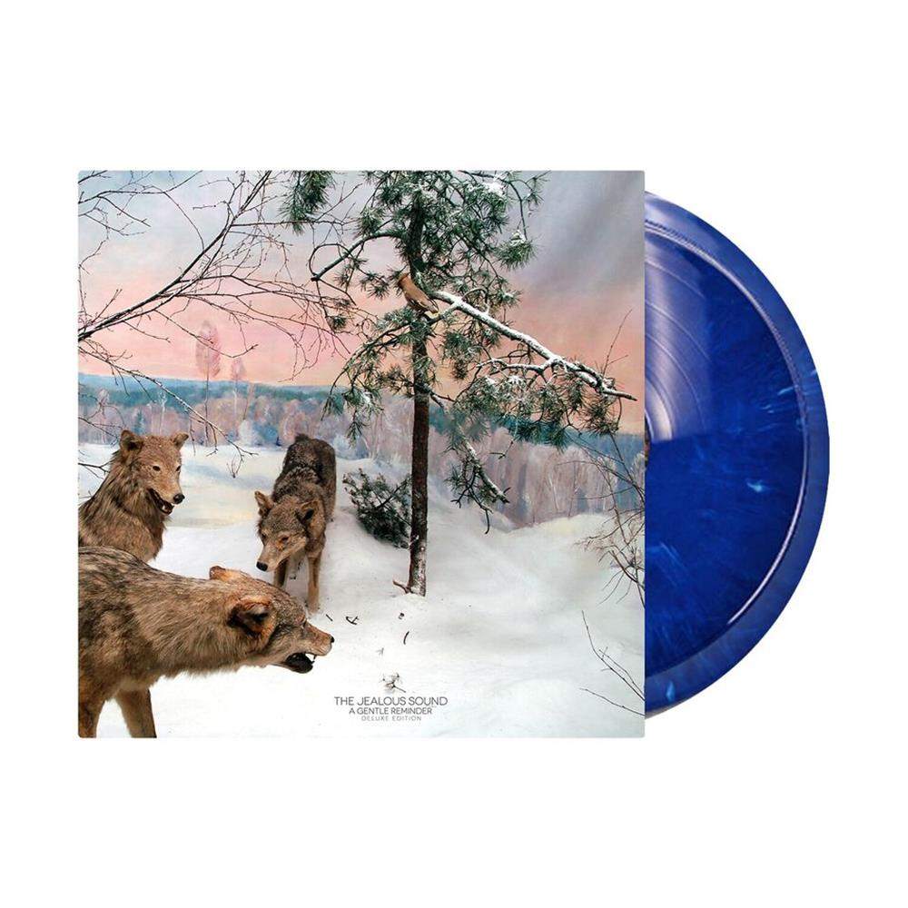 A Gentle Reminder Blue Marble 2 X LP